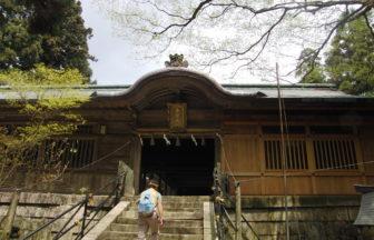 愛宕山山頂にある愛宕神社社殿